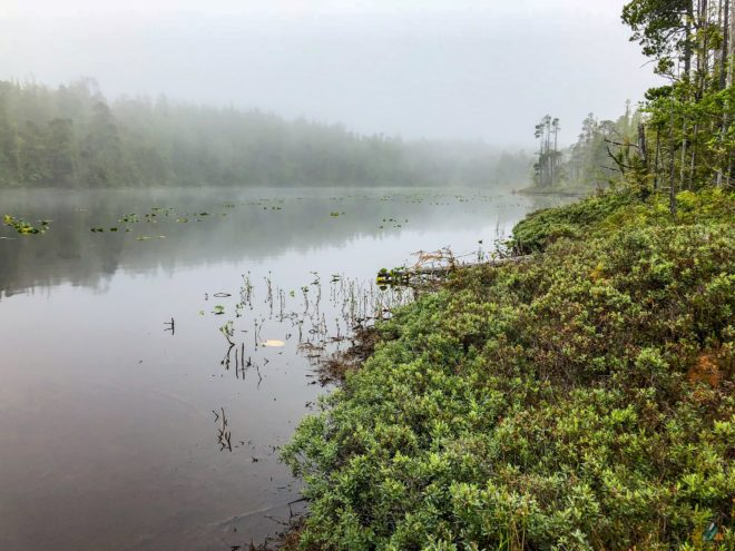 North Coast Trail Laughing Loon Lake Fog